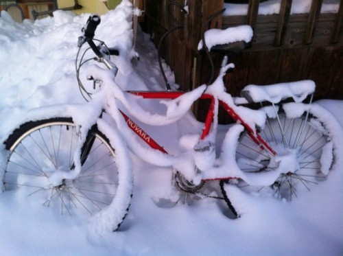 winter at the 'plex